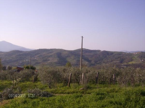 Vendita terreno agricolo Salerno